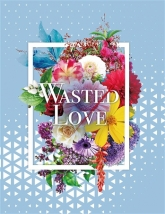 【小説】WASTED LOVE