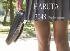 HARUTA 3048   ~The first semester~