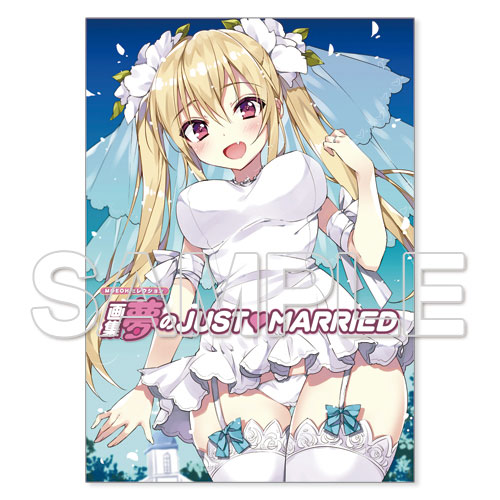 MOEOHセレクション 画集 夢のJUST▽MARRIED
