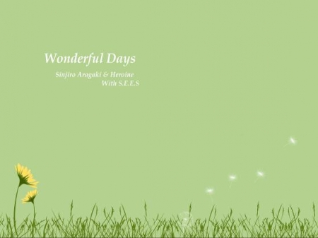 Wonderful days
