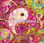 Psychedelic Shrine 2